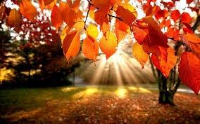 Séance exceptionnelle de Qi Gong ouverte à tous (même aux non-adhérents) lundi 25 septembre à 19H00.<br /><br />Cette séance sera animée par André Joubier, professeur de l'association AVEC (www.associationavec.net).<br />Thème de la séance : s'harmoniser avec la saison de l'automne selon l'approche chinoise ; accueillir le grand Yin de l'hiver.<br /><br />A la Maison des associations Voisins-le-Bretonneux.<br />Places limitées à la capacité de la salle.<br />Participation libre.